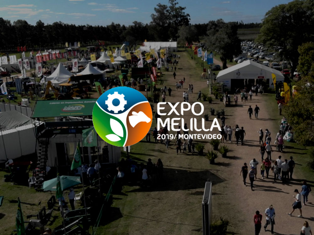 Expo Melilla 2019
